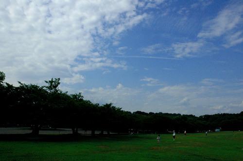 20090822.jpg